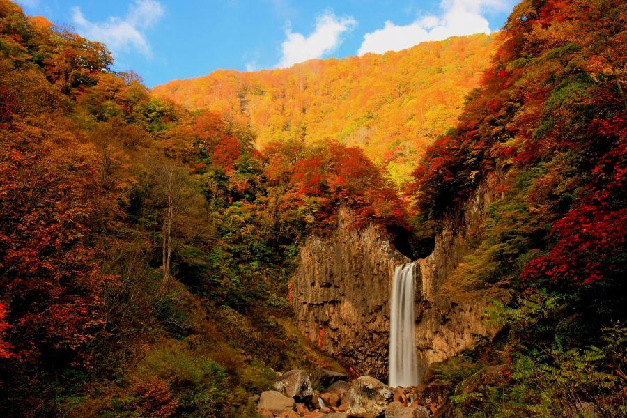 紅葉の名所。秋には多くの人が訪れます。