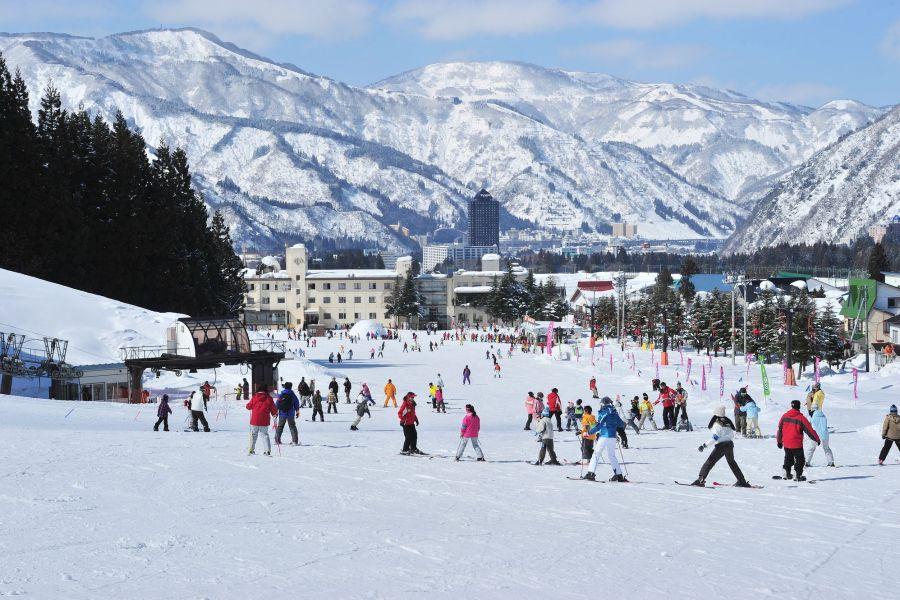 場 新潟 スキー